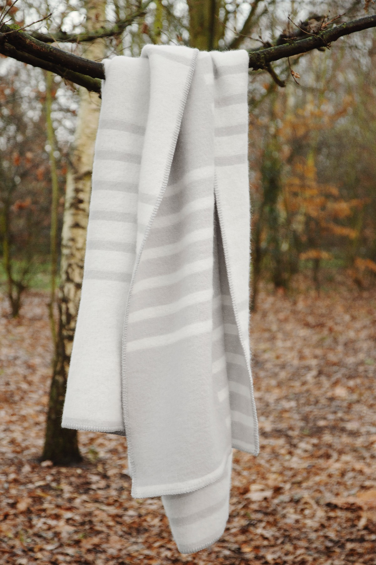 A Classic wool blanket in Cream and Gray hanging on a branch in a tree.