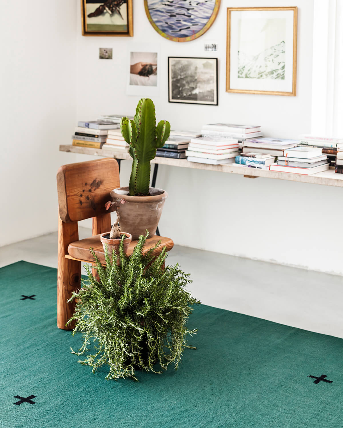 Green Plus rug displayed in a bright room with a potted fern and a cactus.
