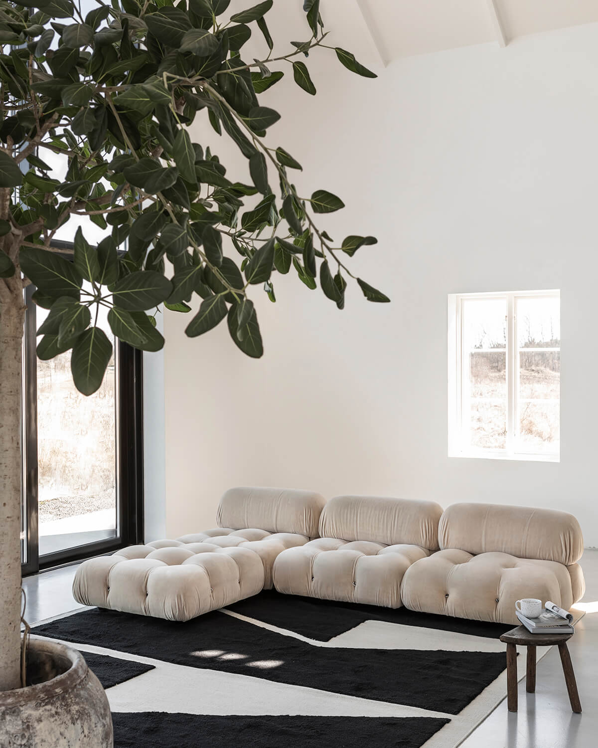 Untitled 1 in a white living room setting with a potted tree in the foreground.